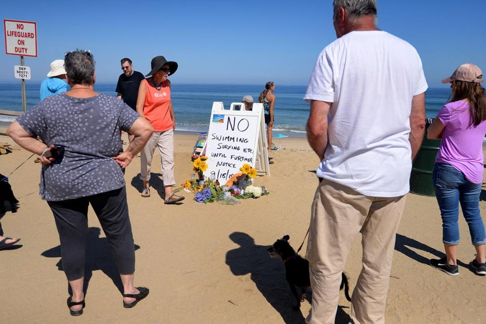 Revere Man Mourned Following Fatal Cape Cod Shark Attack The